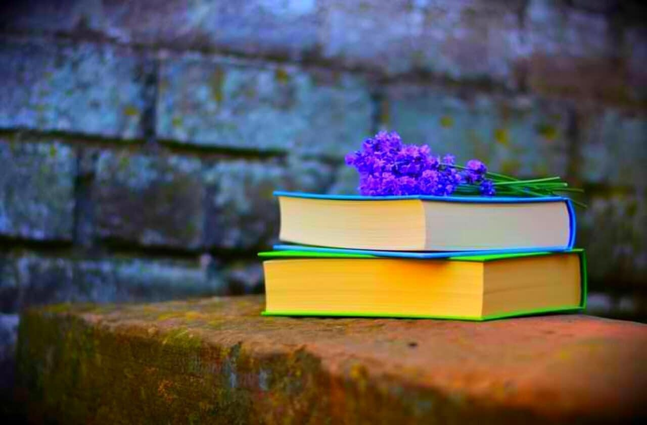 Read more about the article Good Books To Read 2021 And What Kind Of Books Should I Read?